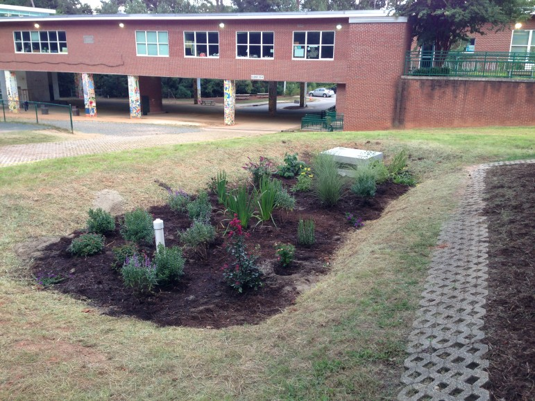 Photo 7 - Planting Complete - Cell 3