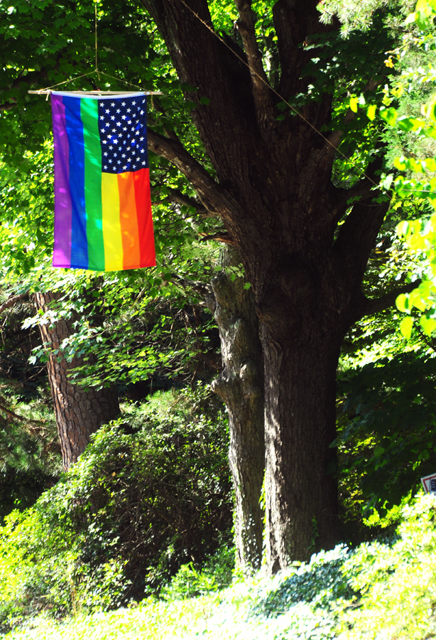 To memorialize the victims of the Orlando Nightclub shooting, Bill Padgett hung this flag over Dixie Trail, where it has flown for the past week.