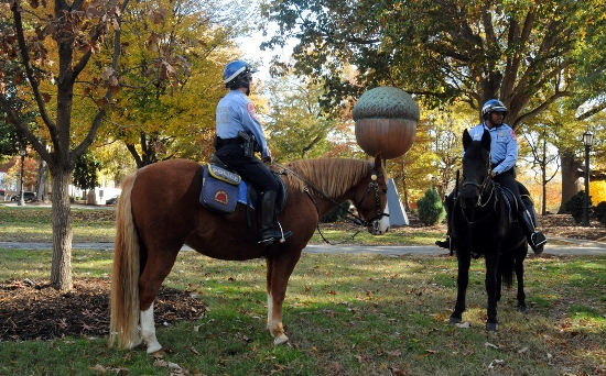 Raleigh's Mounted Police Unit in Moore Square