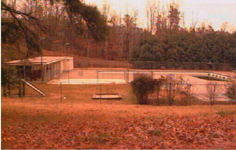 The swim club in 1996